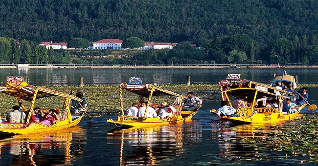 Shikaras at Srinagar Dal Lake