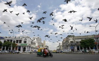 Pigeons fly as clouds gather over New Delhi's Connaught Place July 16, 2009. India's monsoon rains were six percent above normal in the week to July 15, rebounding after a prolonged weak patch, the weather office said on Thursday. REUTERS/Buddhika Weerasinghe (INDIA ENVIRONMENT ANIMALS SOCIETY) - RTR25Q0L