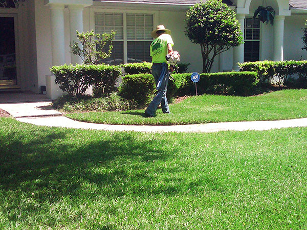 Landscaping-Maintenance